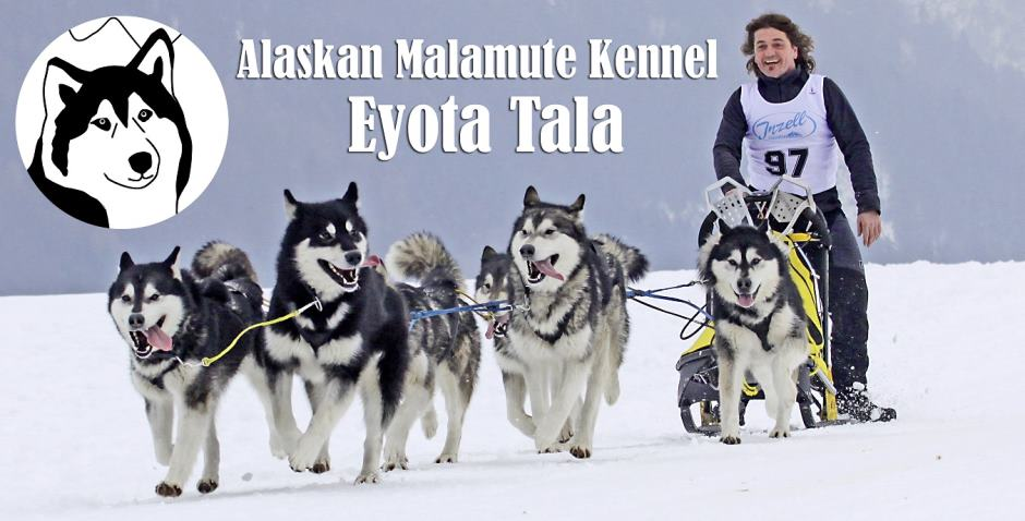 Eyota Tala